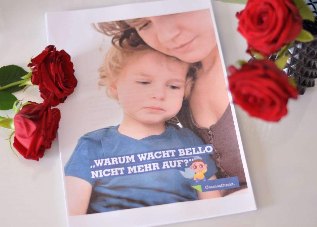 Mit Kindern über den Tod sprechen #werbung #tod #trauer #beerdigung #sterben #kinder #oma #