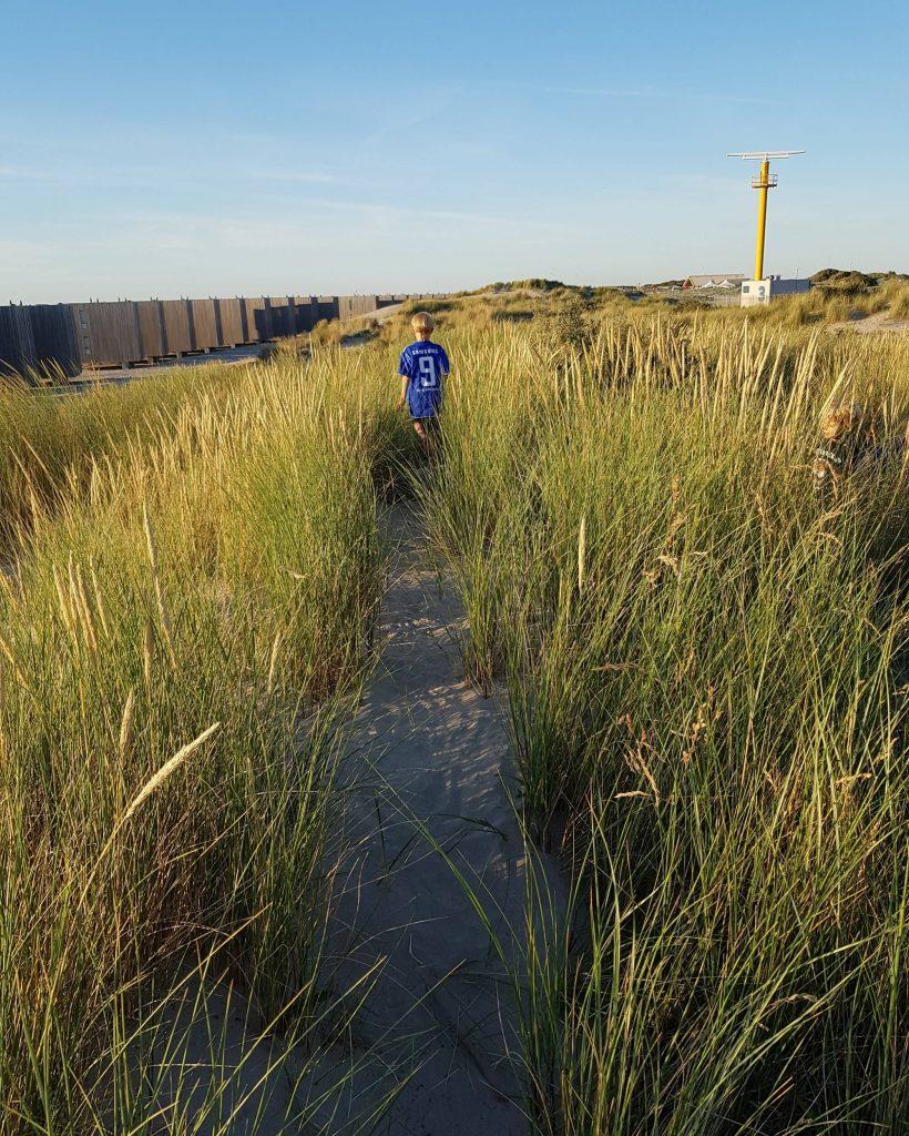 In den Dünen - Diese Dinge lernt man beim Faulenzen: Wofür die Sommerferien gut sind