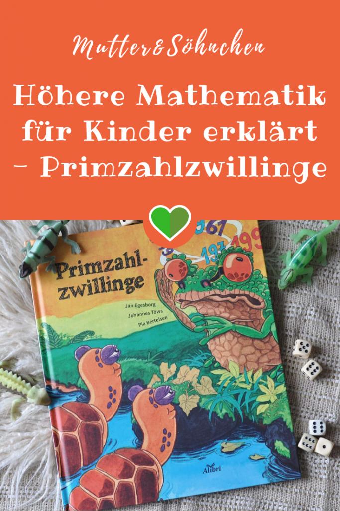 Ein Lösungsweg für die mathematische Logik von Primzahlen für Kinder ab 7 Jahren #primzahlzwilling #bilderbuch #sachbuch #kinderbuch #mathe