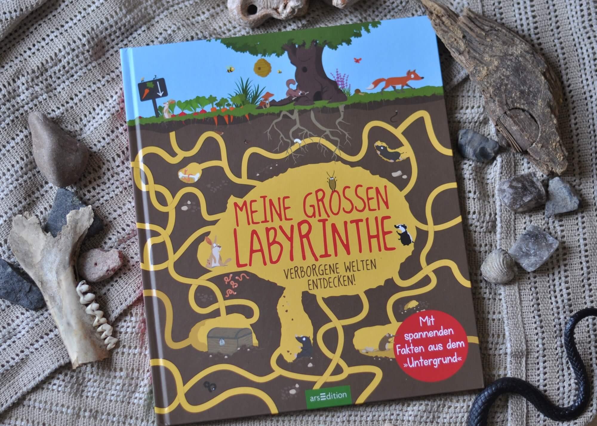 Verborgene Welten unter der Erde entdecken. Ein witziges und faszinierendes Sachbuch für Kinder ab 6 Jahren. #Labyrinth #Schbuch #lesen #kinderbuch #erde #höhle #ameise #unterwasser #forscher