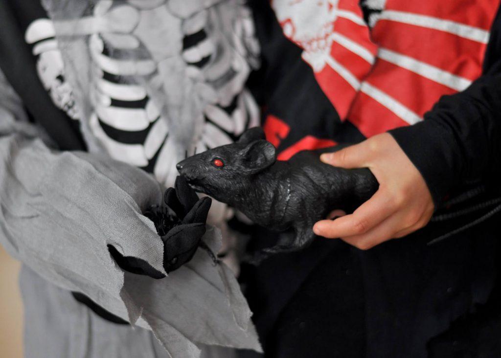Halloween-Kostüm kaufen oder selbst basteln? Ich zeige euch, wie man ein Skelett-Kostüm easy selbst bastelt und pimpen kann. Imer Vergleich dazu ein Kostüm von der Stange. #halloween #skelett #kostüm #verkleiden #diy #basteln #kinder