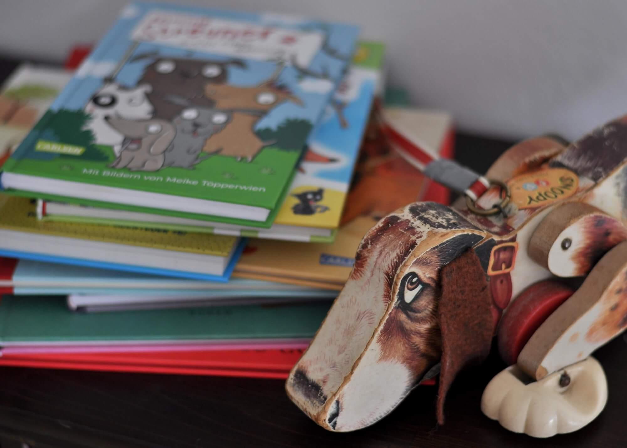 """Wie fühlt sich ein Hundebaby, wenn es in ein neues Zuhause kommt? Wie ist es, ein Hund zu sein? Was passiert, wenn ein anderes """"Haustier"""" eifersüchtig auf einen Vierbeiner ist? Wie denkt ein Polizeihund? Und suchen sich Hunde eigentlich auch einen Menschen aus? Ich stelle euch neun richtig lustige abgedrehte Bücher mit Hunden vor, die zum vorlesen oder selbst lesen für Kinder ab 3 Jahren geeignet sind. #hund #buch #kinder #comic #lesen"""