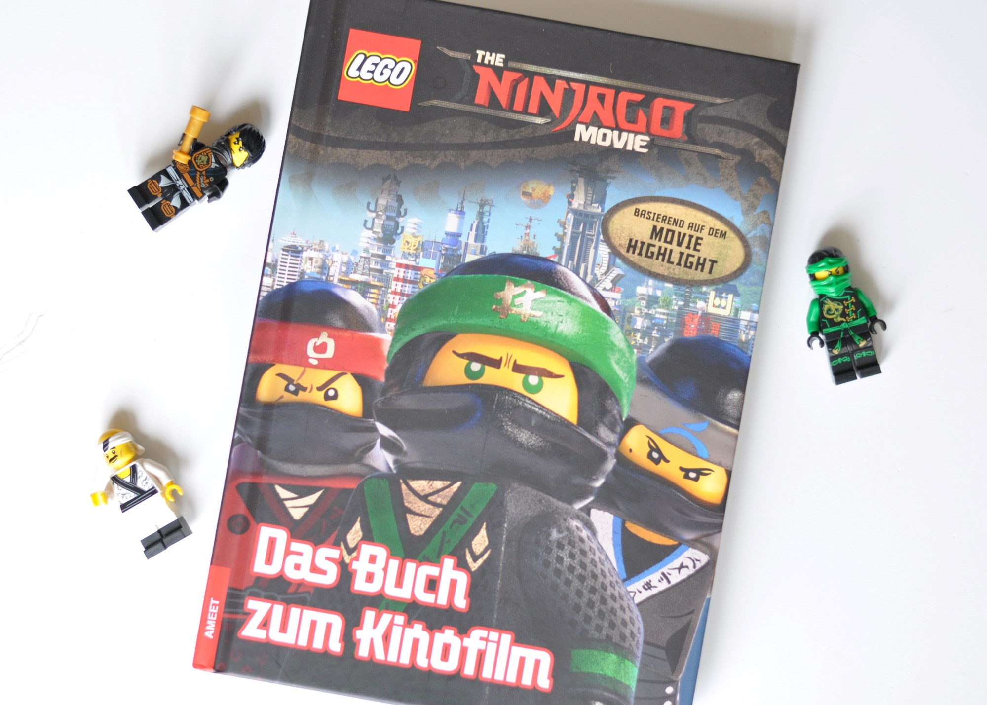 The Ninjago Movie - Das Buch zum Film