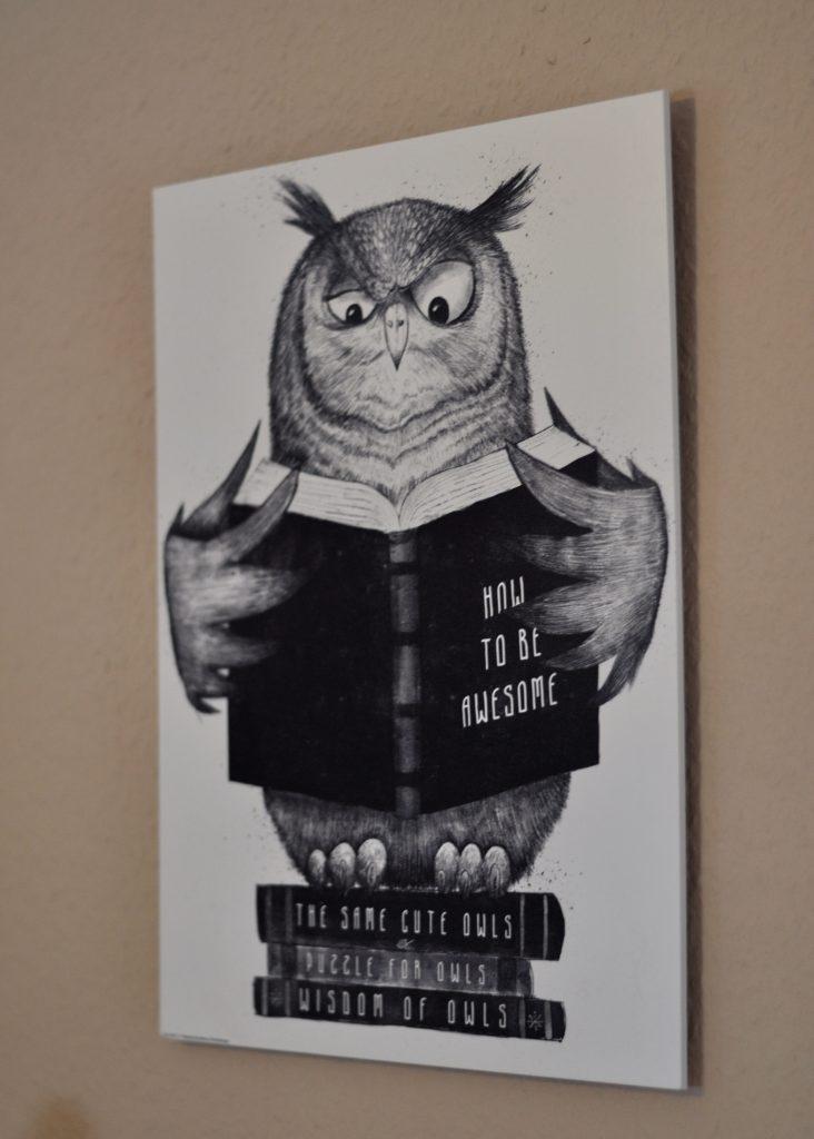 Eule mit Buch von Posterlounge