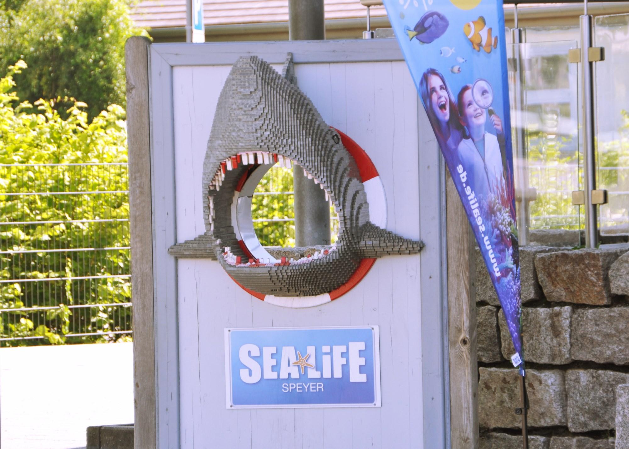 Mitmachen & Entdecken für kleine Meeresforscher – SEA LIFE #Verlosung